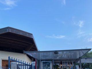 WalkingWine Puglia 3