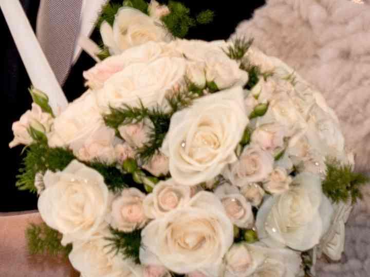 Rosa bianca servizio di incontri