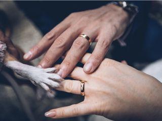 Wedding Dog Sitter 1