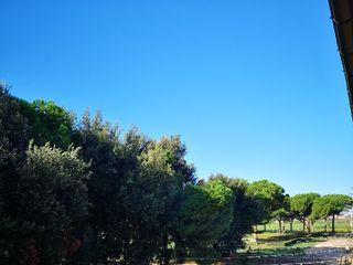 Tenuta Pantano Borghese 5