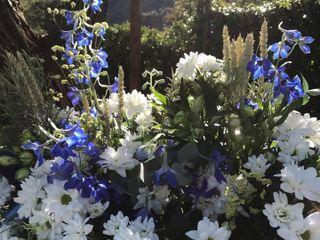 Il Fiore di Fabrizio Ghiroldi 2