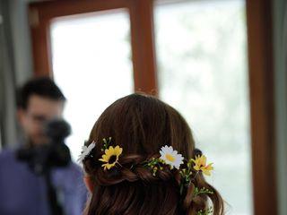 Hair Shine 1