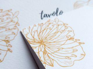 Serena Carpinteri Graphic Designer 4