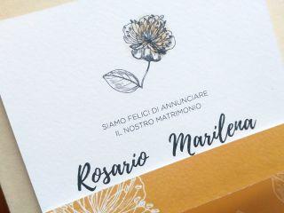Serena Carpinteri Graphic Designer 5