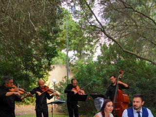 DejaVu Musica & Eventi 7