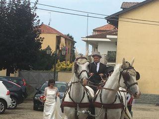 White Horse 5