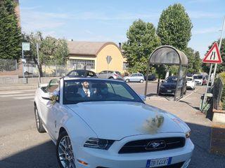 Mustang Noleggio 1