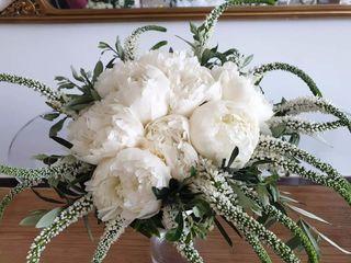 Olimpia Veronico Floral Designer 5