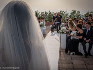 Wedding Dog Sitter 5
