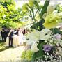 le nozze di Viviano e Stefano Torreggiani PhotoTeam 12