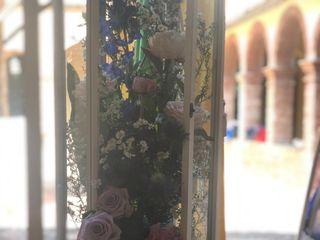 Ferretti il Giardino di Venere 3