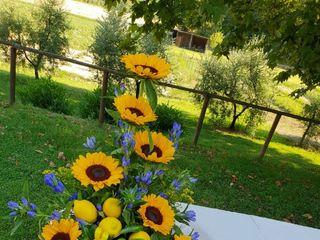 Vincenzo D'Addessio Floral Designer 2