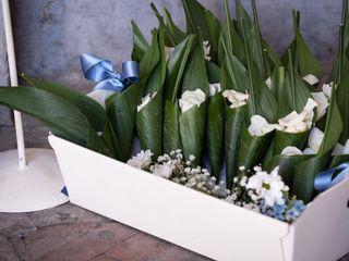 I fiori di Sara Due 5