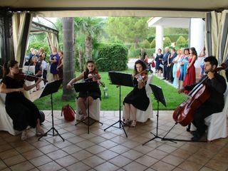 Violin Married 1