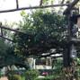 le nozze di Anna Marano e Villa del Vecchio Pozzo 11