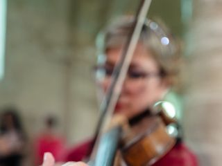 Violino per matrimoni 4