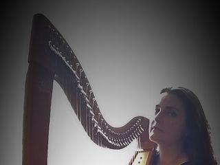 VoceDAnimA - Arpa, voce, violino 4