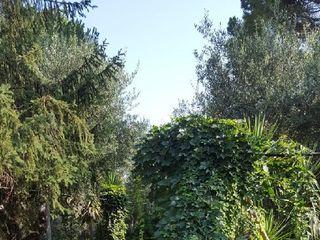 Villa delle Querce 5
