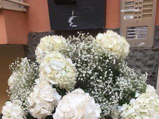 Lillà Flowers 1