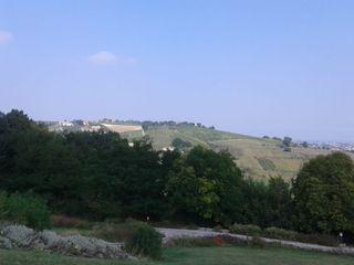 Villa dei Cigni 2