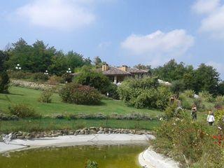 Villa dei Cigni 3
