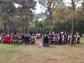 Metamorphosis Wedding Band 2