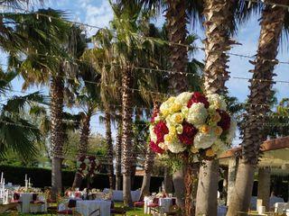 Isola Verde Restaurant 3