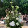 Le nozze di Stefania T. e Free'n'Joy 50