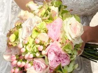 L'arcobaleno dei fiori 3