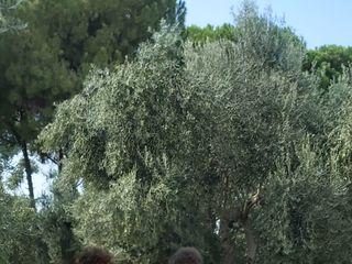 Villa Ciccorosella 4
