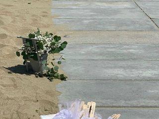 New Line Flowers Floricoltura Lari 1