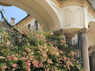 Villa Panza - FAI Fondo Ambiente Italiano 5