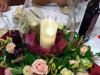I petali di Lea 1