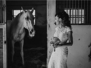 Stefano Cassaro Photography 2