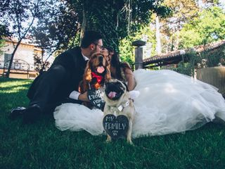 Wedding Dog Sitter 2