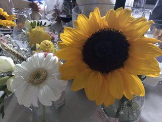 Novia Weddings 4