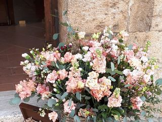 Blue Rose Events di Simi Maria Cristina 2
