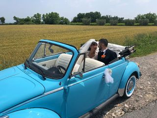 Iris Limousine 4