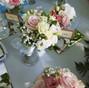 Floricoltura Mazzocchi 10