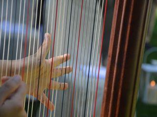 Chiara Bonardi - Arpista 2
