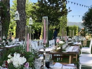 Caterina Weddings 4