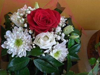 Florart 5
