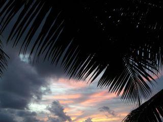 Tropico del Capricorno - Frigerio Viaggi Network 5