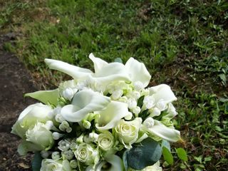 FreeLance Flowers 1