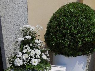 I fiori di Luciano e Patrizia 4
