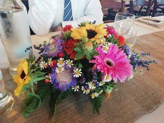 I fiori di Luciano e Patrizia 5