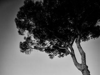 Foto Giulio 2