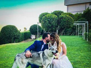 Bautopia Wedding Dog Sitter 1