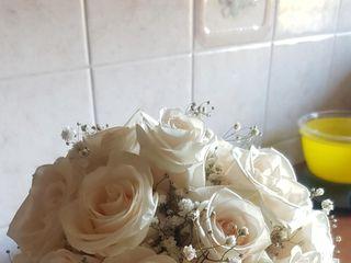 Ditelo con un fiore 4