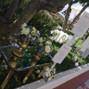 Le nozze di Antonella e Grand Hotel di Maratea - Pianetamaratea 72